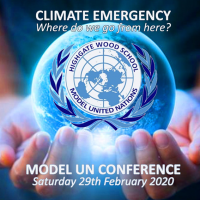 climate emergency conference icon